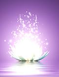 Lotusfactuur